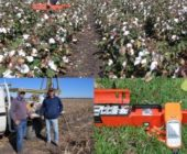 EMI technologies on cotton farms – Collaborative research between DRNM and Black Earth