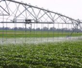 Soil Moisture Monitoring using an EM38 – Irrigation Scheduling and Fallow Measurement