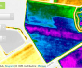 NDVI and SVI Satelitte imagery as a tool to assess cotton defoliation timing